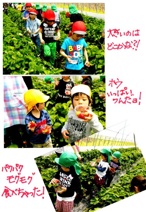 20140512 (15).jpg
