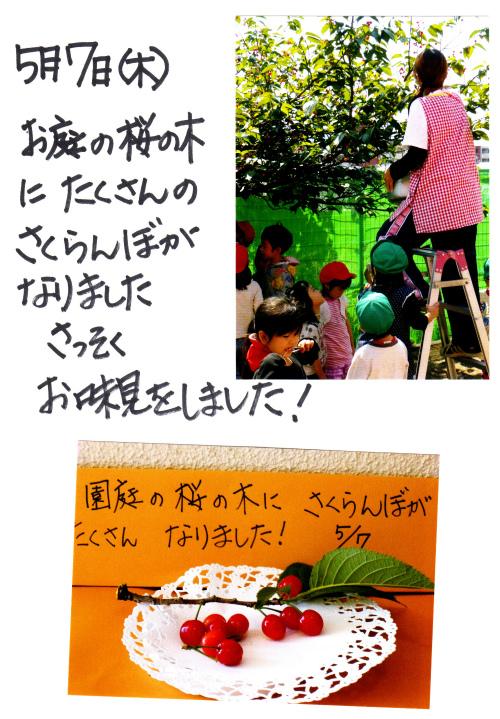 20140512 (16).jpg