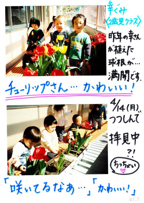 20140512 (6).jpg